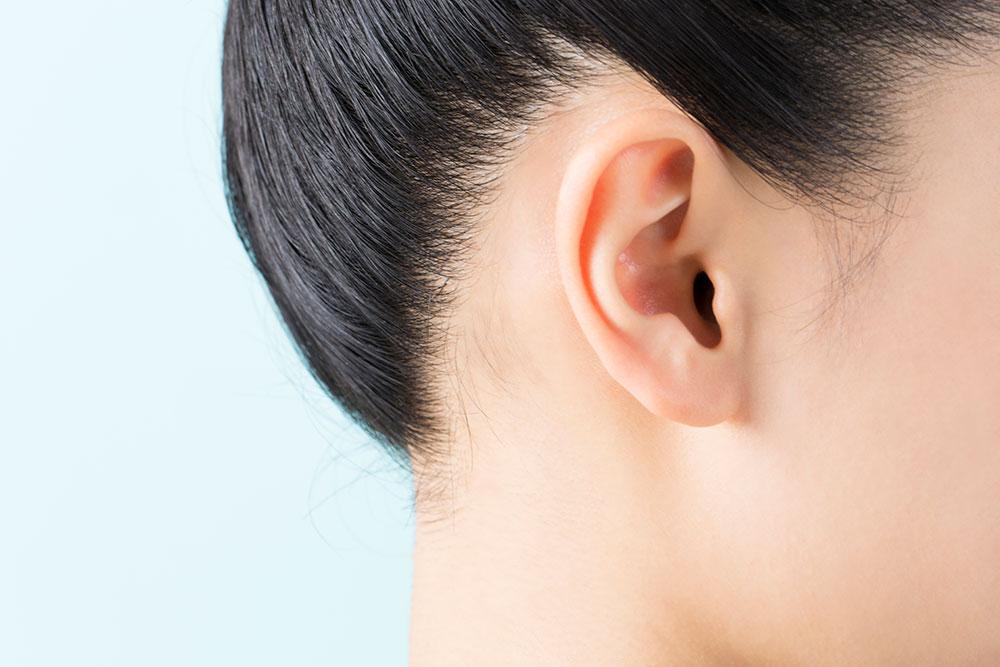科 加古川 耳鼻